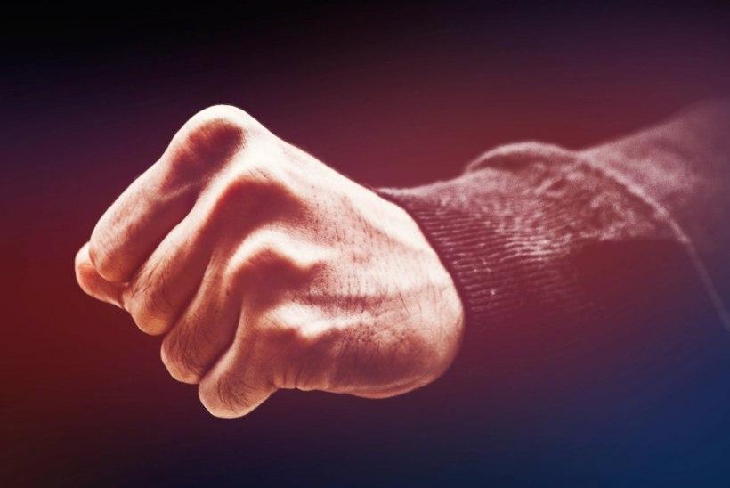 LUGEJAKIRI | Olen perevägivalla ohver, aga mina ründasin (vist) esimesena, sest…