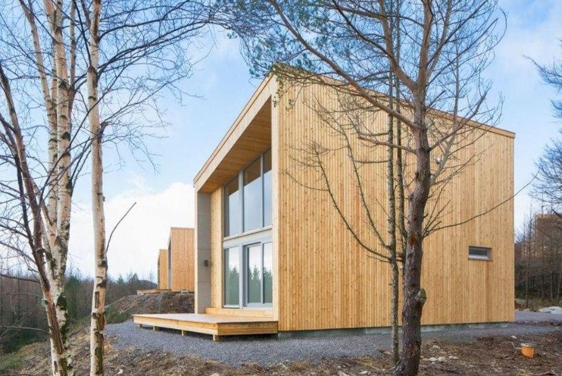 Eesti Vabaõhumuuseumisse püstitatakse nüüdisaegse puitmaja näidishoone