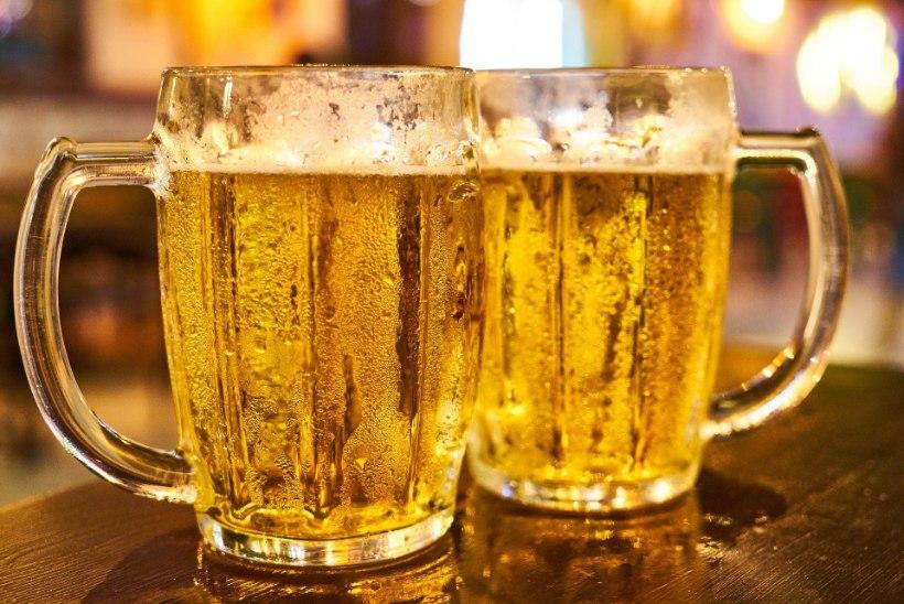 EFEKTIIVNE: pruulikoda pakkus varastatud kaubikuni viiva info eest tasuta õlut