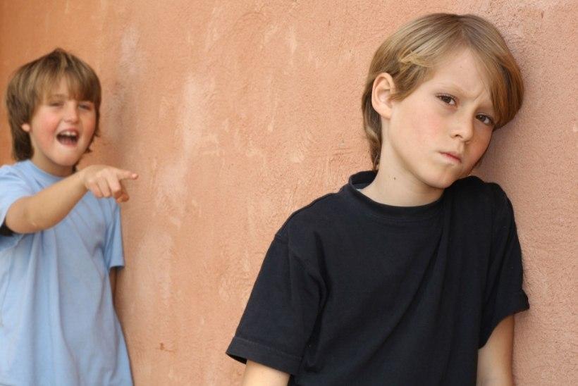 UURIMUS: koolikiusamine laastab ka kiusajaid