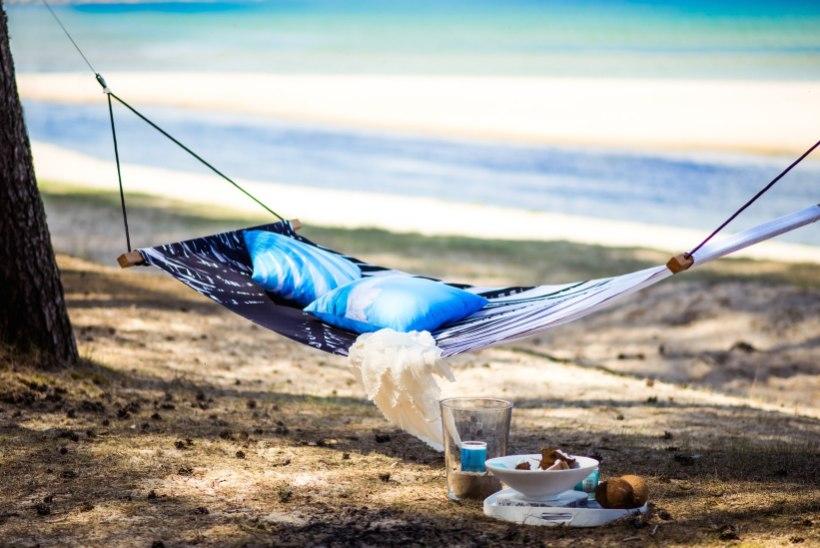 5 asja mida ei tasu unustada kui oled planeerimas piknikku!