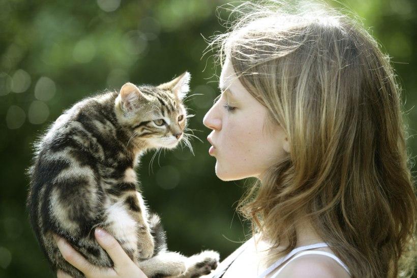 """Teadlased: """"Kass on rumal ja isekas? Vale puha!"""""""