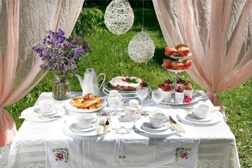Mis on suvi ilma aiapeota? Kuidas pidu nii ettevalmistada, et see oleks kõigile meeldejääv?