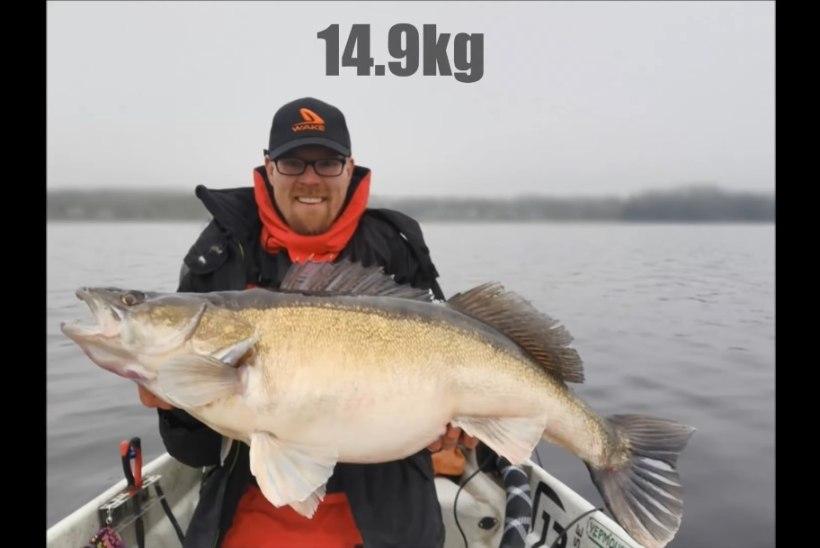 REKORDKALA: soomlane püüdis 14,9 kilogrammi kaalunud koha