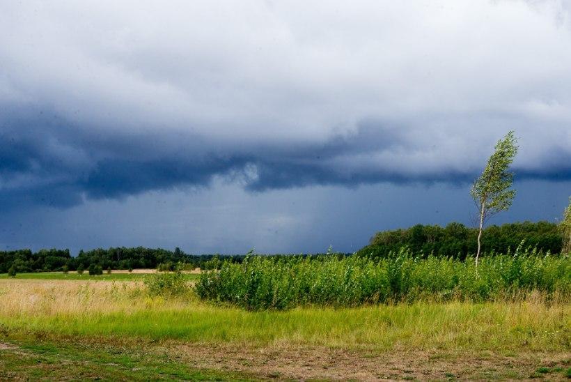 ILMAPROGNOOS | Nädalalõpp tuleb soe ja kergete vihmahoogudega