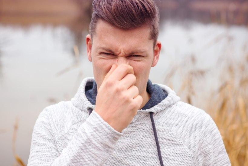 Haisev maapood: kuidas müüjaga viisakalt ebameeldivast higilõhnast rääkida?