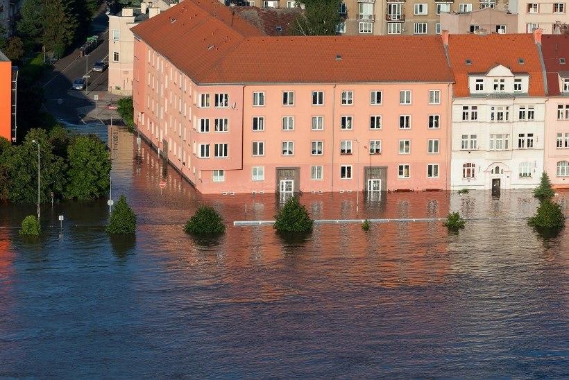 Veekahjustused kodus võivad tuua kaasa meeletud kulud