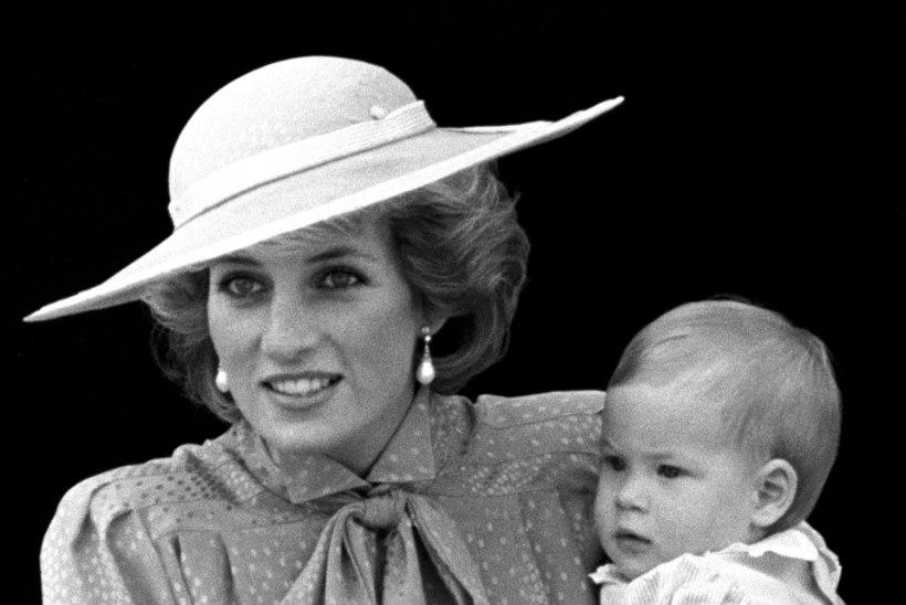 SÜNDSUSETUSE TIPP: Diana surmast tehti lõbustuspargi atraktsioon