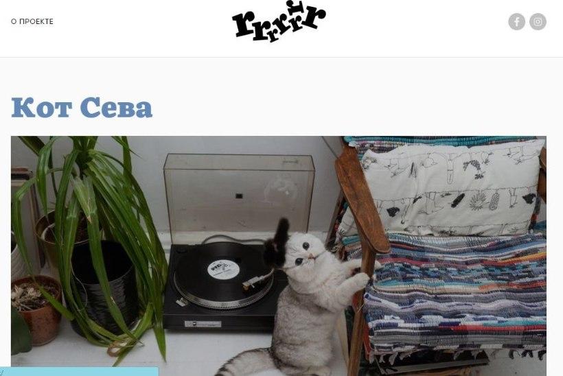 В России запустилось глянцевое медиа про кошек и собак. Rrrrrrr!