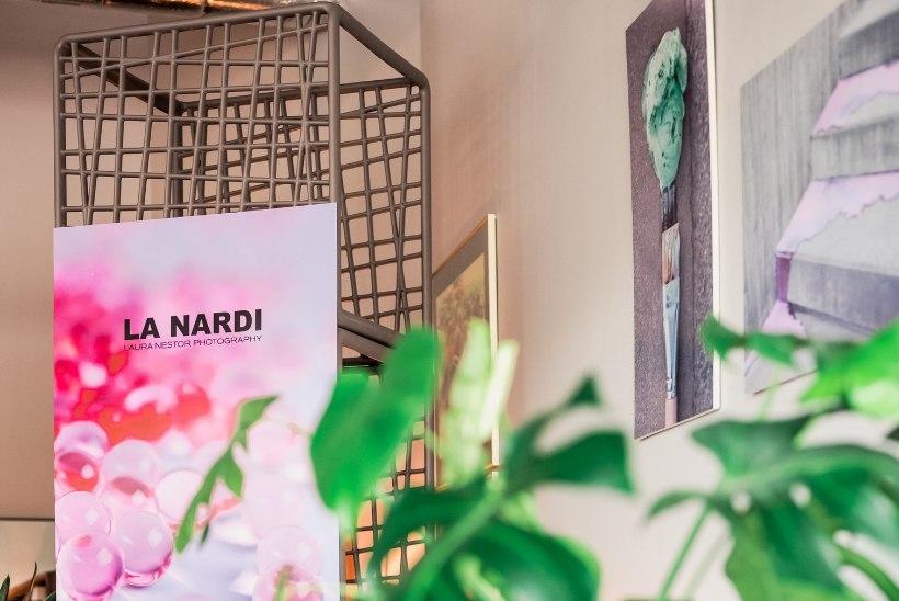 """GALERII I Treimanni mööblisalong muutus mõnusaks galeriiks, milles tutvustati Laura Nestori fotosarja """"LaNardi"""""""