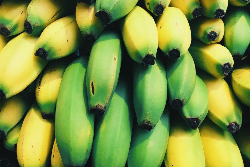 TÕSTAB TUJU JA TOETAB MAKSA: banaan turgutab tervist veel väga mitmel moel!
