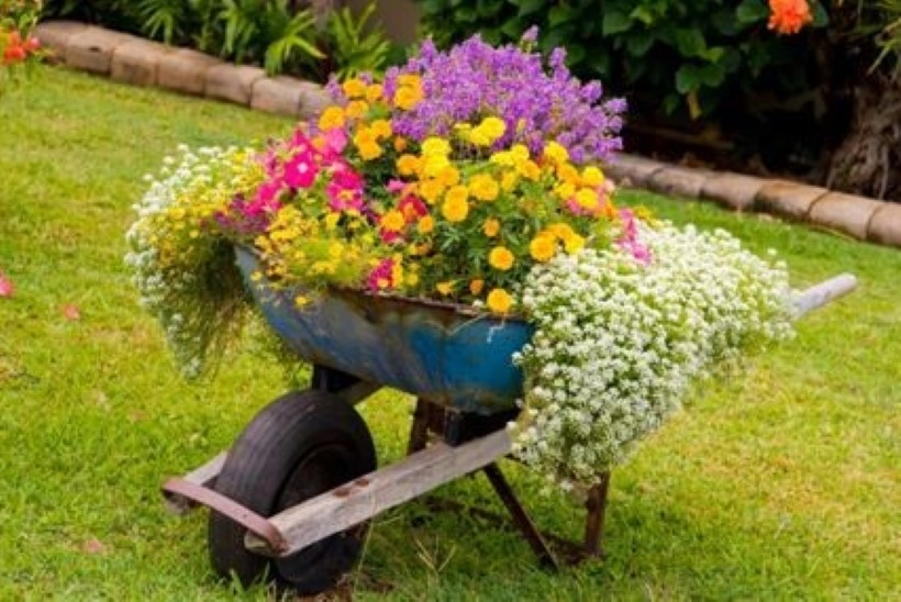 6 nutikat ja omapärast lillepotti sinu aeda