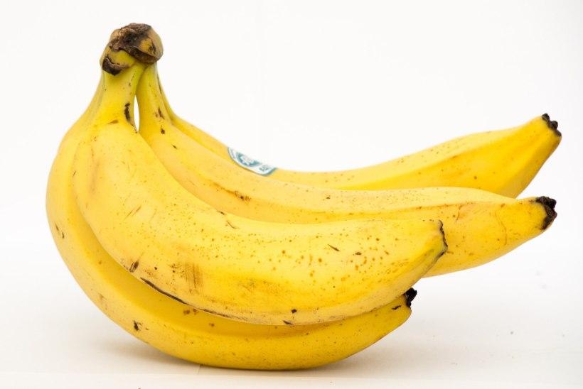 Ole nutikas: kuidas toidujääke ära kasutada