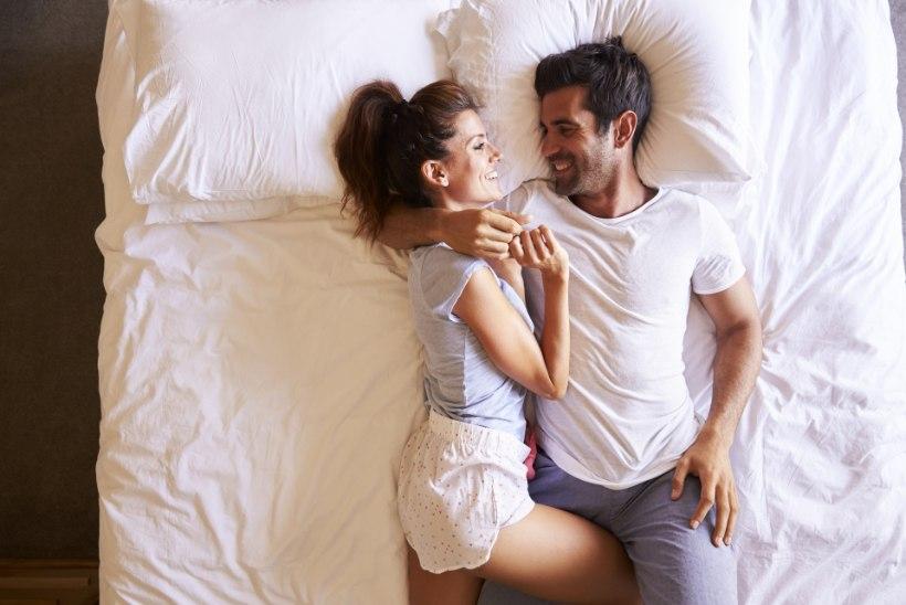 SÄDEMEPÄÄSTJA VÕI KIRETAPJA? Seksikalender aitab teineteise jaoks aega leida