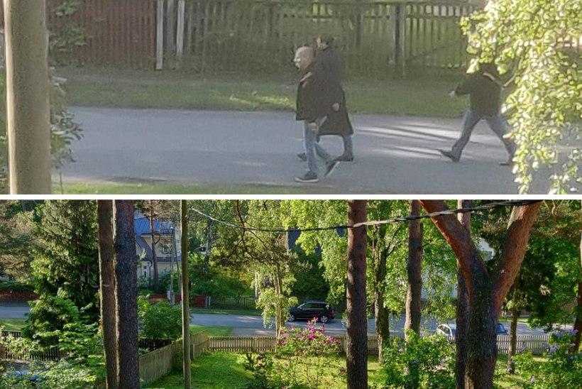 FOTOD   Miks kõndis president ihukaitsjatega hommikul Nõmmel?