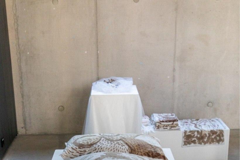 Выпускные работы в Академии художеств Эстонии: постельное белье в менструальной крови