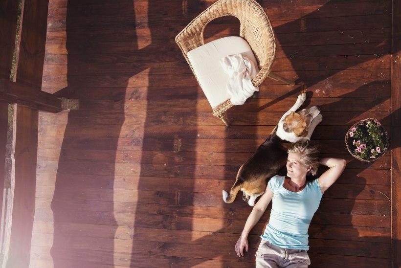 ET TERRASSID PÜSIKSID KAUA TERVED JA ILUSAD – kuidas neid puhastada ja õlitada?