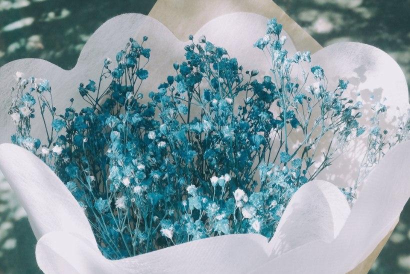 LILLEDEKEEL: igal lillel ja värvil on oma tähendus
