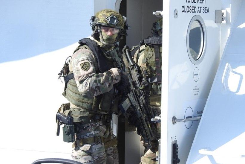 VIDEO JA FOTOD | Kevadtormil pandi kaitseväe ja PPA üksused praami seintelt üles ronima