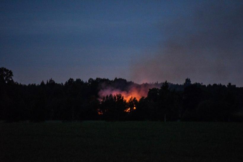 Viljandimaa talunikud põletavad hooneid juba öösiti
