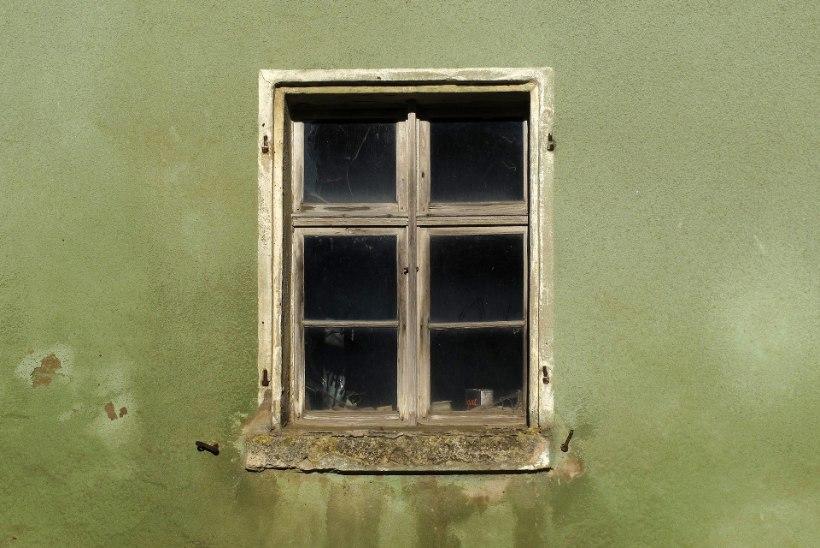 KOLE JA KAHJULIK: kuidas vabaneda fassaadil elutsevast taimestikust?