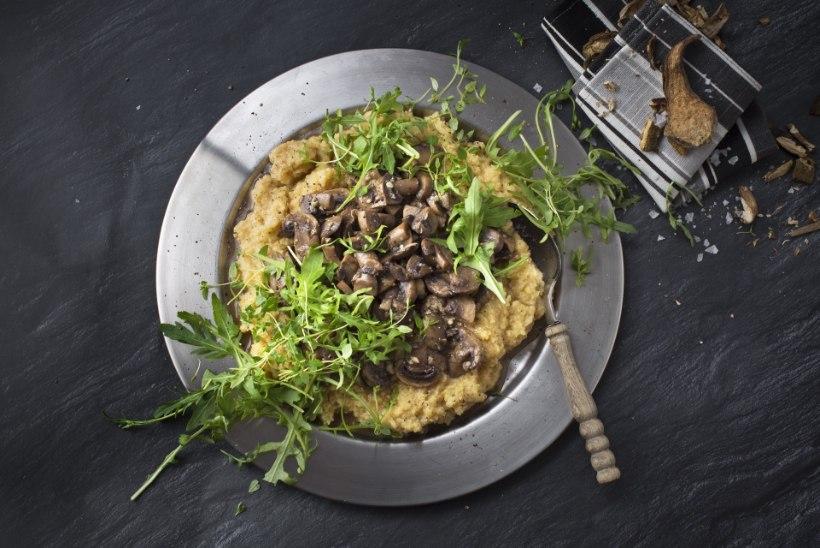 PÄEVARETSEPT! Küüslaugune seeneraguu pehme polentaga sobib hästi ka tervislikumalt toitujale