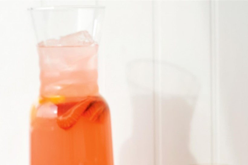 KISUB KUUMAKS: 5 jahutavat jooki soojal suvepäeval nautimiseks