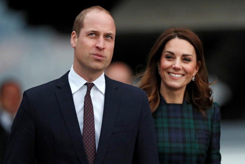 RÄNK ÕNNETUS: prints Williami ja Kate'i konvoi sõitis vanaprouale otsa