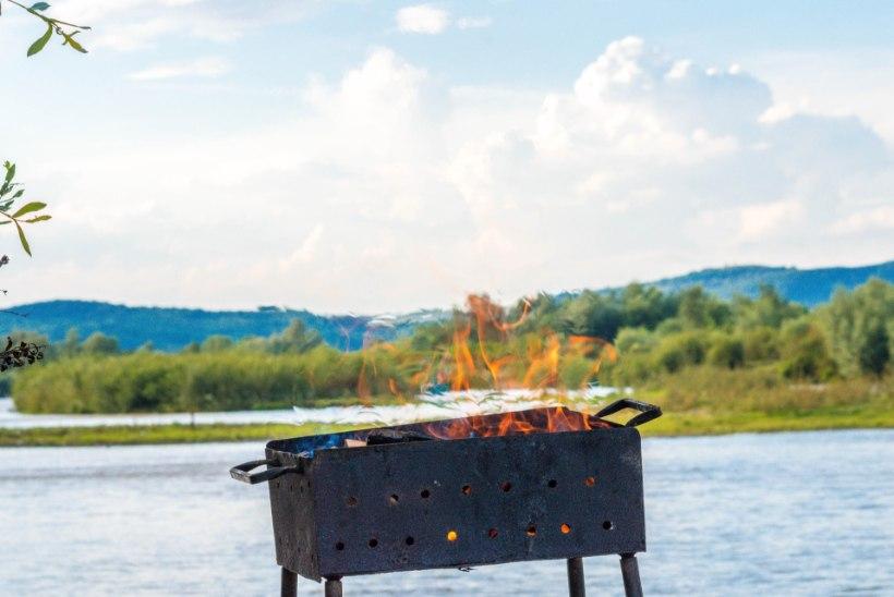 Väärt näpunäited, mida peaksid kindlasti teadma enne grillima asumist