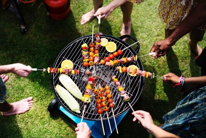 PÕHJALIK JUHEND: kuidas valida sobivat grilli?