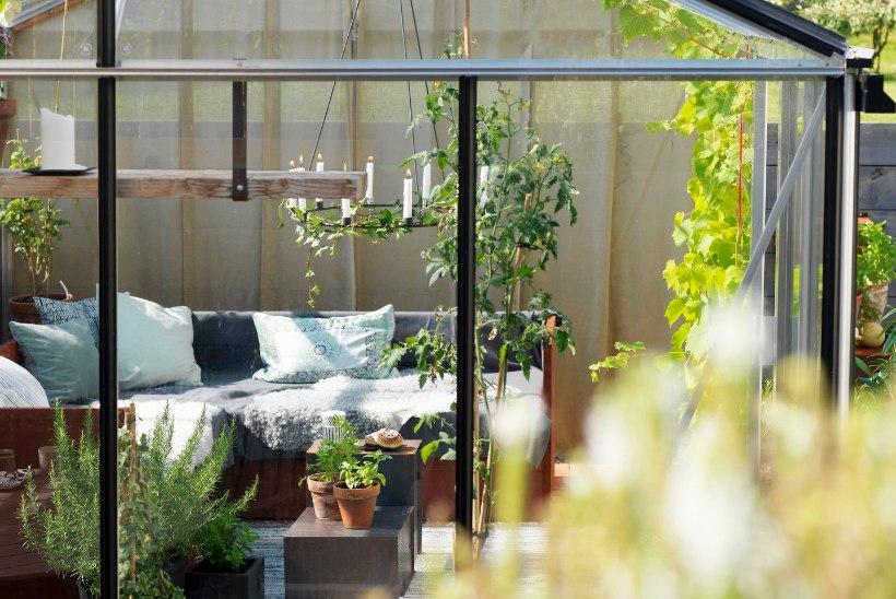 Vaata ja tee järele! Kohvilaud sobib ka imelislet kasvuhoonesse! Kasvuhoone on mõnus koht ka paljuks muuks, kui ainult kurkide kasvatamiseks!