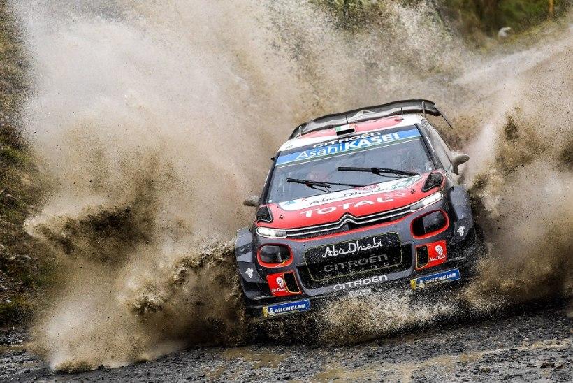 SUPER! Ralliäss liitus Hyundai WRC tiimiga ja tuleb ka Rally Estoniale