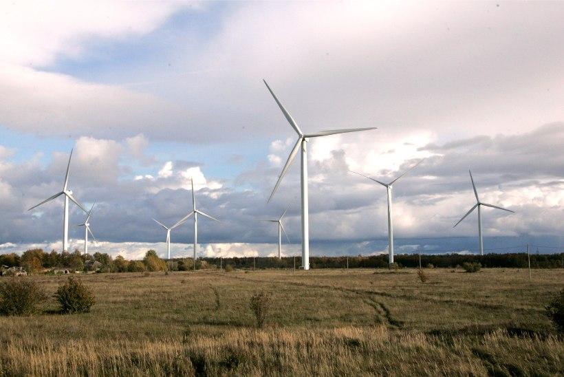 Eesti Energia hakkab uurima Läänemaale tuulepargi rajamise võimalusi