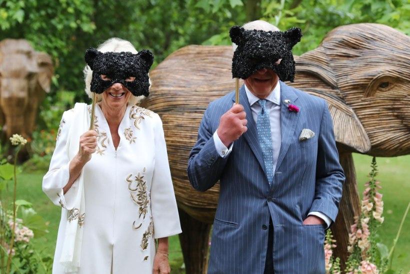 PALJASTATUD: milline kuningliku perekonna liige kulutab kõige rohkem maksumaksja raha?