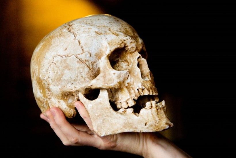 KOLBAJAHT: teadlane õhutab lootust, et Sakala vanema Lembitu pealuud tasub edasi otsida