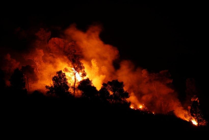 Ohtlik kuumalaine Euroopas: temperatuurid kerkivad 44 kraadini, Hispaanias möllab aastekümnete suurim tulekahju