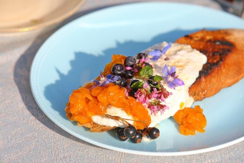KUIDAS LILLED MAITSEVAD: salatile passib kärtsakas kress, lihale piprane rediseõisik ja koogile hapukas begoonia