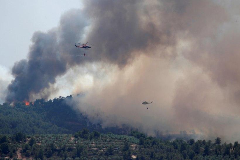 Hispaania suure maastikupõlengu põhjustas põrgukuumuses süttinud sõnnik