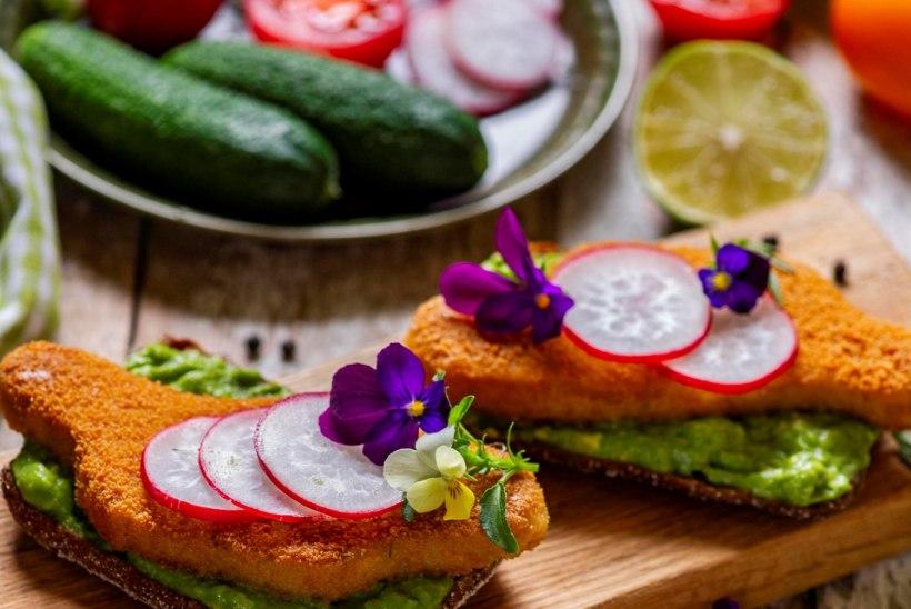 TERVISETEADLIKE RÕÕMUKS: valefrikadelli supp ja võileib veganšnitsliga