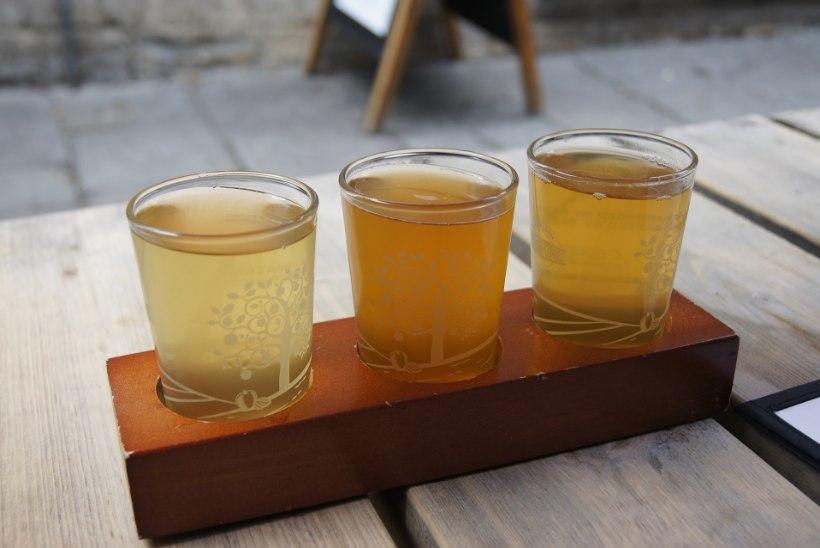 NAISTELEHT TESTIB | Kui siidrimaitse meeldib, siis kas asja ajab ära ka alkoholivaba õunasiider?