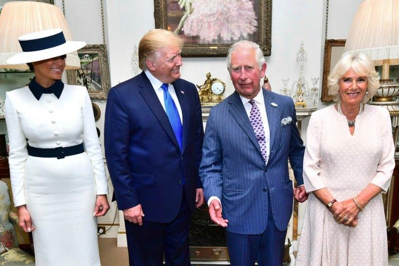 Hertsoginna Camilla silmapilgutus fotograafidele sai internetisensatsiooniks