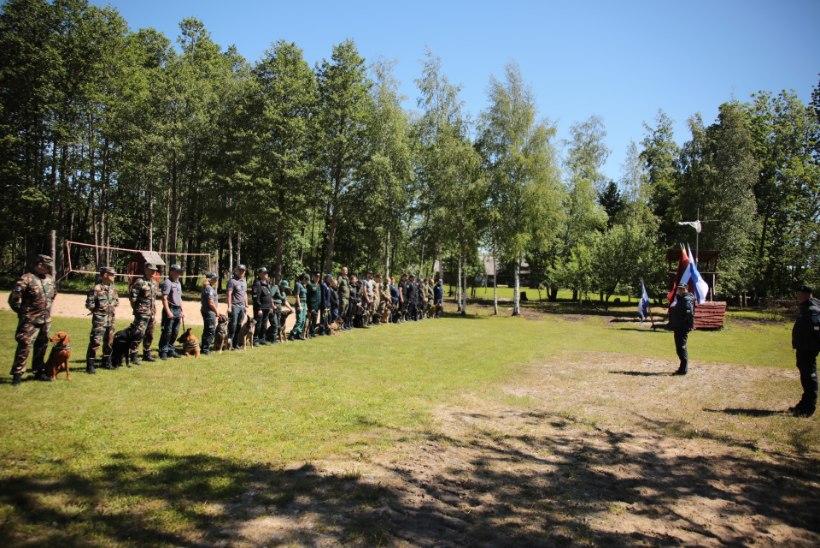 GALERII | Eesti, Läti ja Leedu narkokoerad võtsid omavahel mõõtu