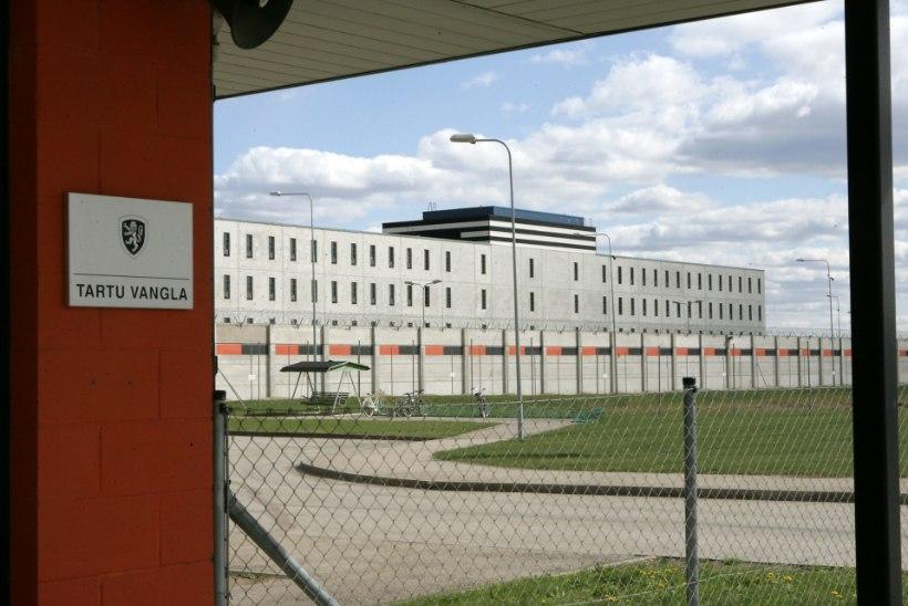 """Tartu vangla andis kogemata koputaja välja: ausast kongikaaslasest sai üleöö kinnimaja """"kits"""""""