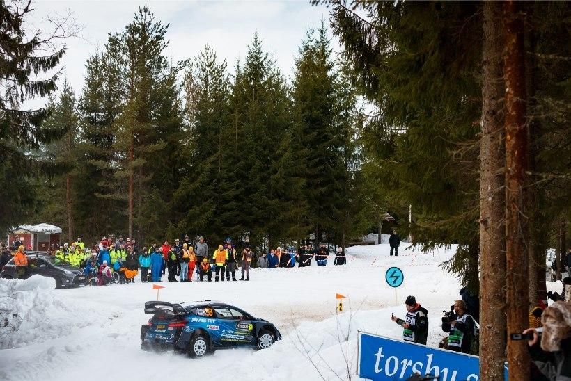 Selgus kolmas WRC-piloot, kes kihutab Rally Estonial