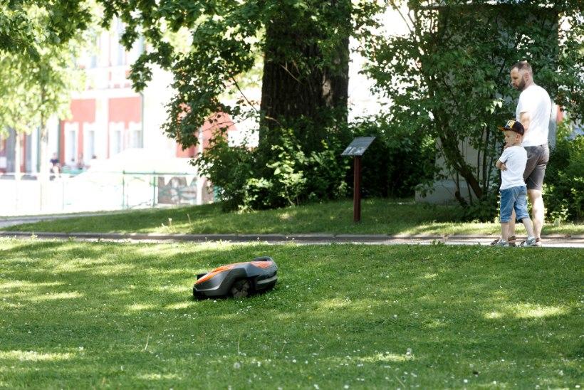 ÕL VIDEO | ROBOTNIIDUKI TEMBUD: üle varba ei sõida, aga võileiva pistab nahka!