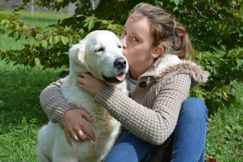 Koeraarmastuse määravad suuresti geenid