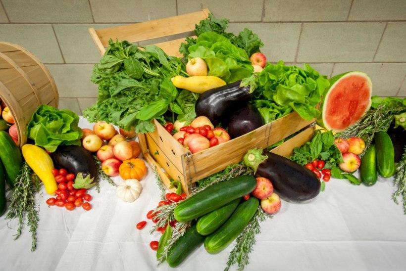 RIIGIKONTROLLI AUDIT: toiduanalüüside puudulikkus on ehmatav