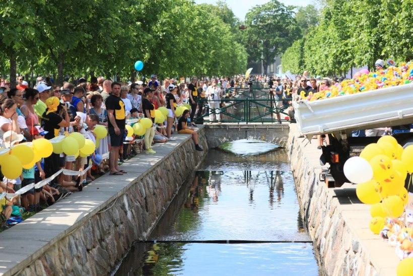 GALERII | Pardirallil lasti vannipardid võistlustulle!