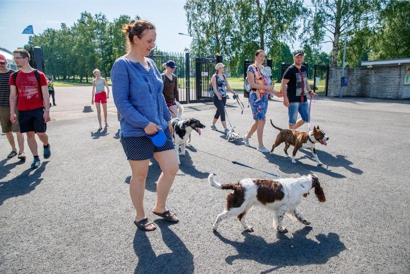 GALERII | Käpakäik tõi inimesed loomade heaks marssima