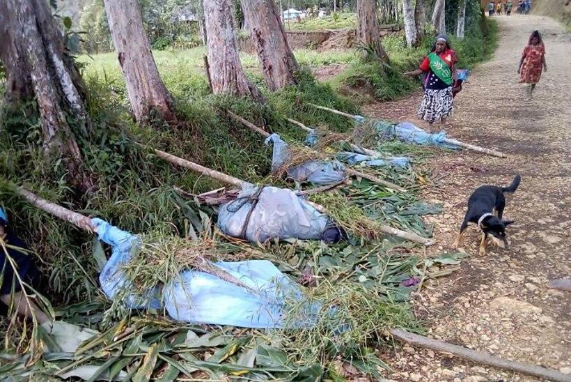KULD AJAS TAPMA: Paapua Uus-Guineas hukkus hõimudevahelises konfliktis mitu last ja rasedat naist